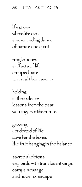 Jude Schlotzhauer, Skeletal Artifacts poem